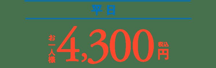 平日 お一人様 4,300円(税込)