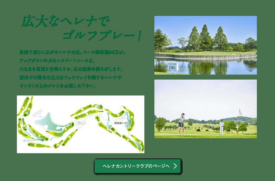 広大なヘレナでゴルフプレー!